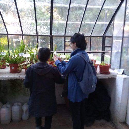 botanico18