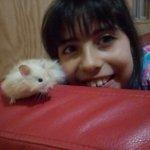 Foto del perfil de Silvana Elizabeth Perez Muñoz
